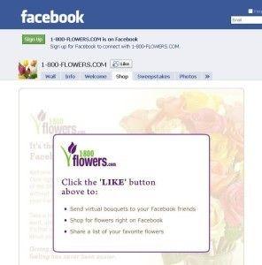 comercio electrónico en Facebook