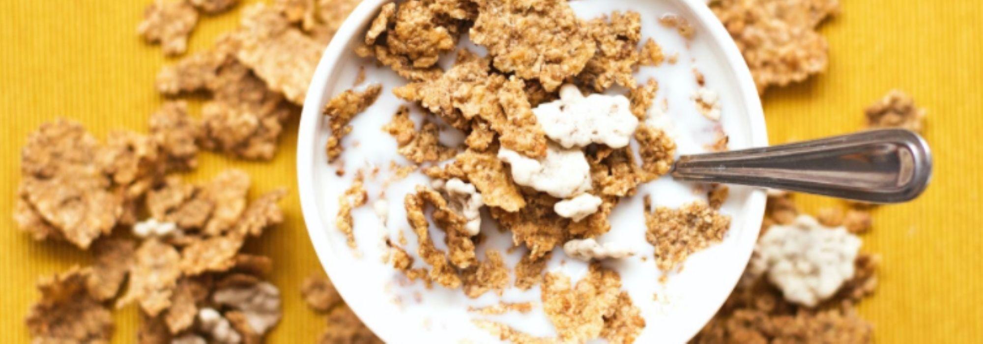 Taza con cereales que representa al sector de la alimentación